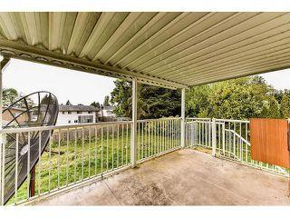 Photo 18: 7845 117 Street in Delta: Scottsdale House for sale (N. Delta)  : MLS®# F1439806