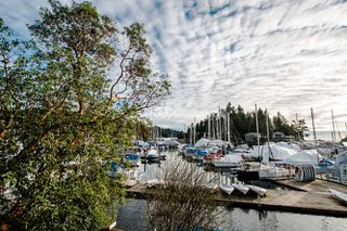 Photo 16: 5861 MARINE Drive in West Vancouver: Eagleridge House for sale : MLS®# R2027829