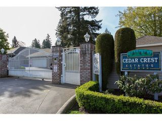 "Photo 2: 43 21848 50TH Avenue in Langley: Murrayville Townhouse for sale in ""Cedar Crest"" : MLS®# R2057565"