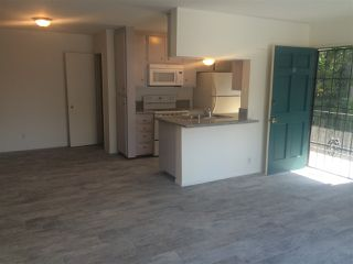 Photo 2: PACIFIC BEACH Apartment for rent : 2 bedrooms : 962 LORING Street #2B