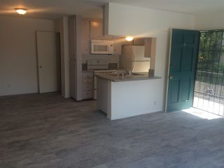 Photo 3: PACIFIC BEACH Apartment for rent : 2 bedrooms : 962 LORING Street #2B
