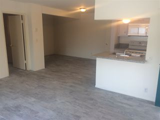 Photo 4: PACIFIC BEACH Apartment for rent : 2 bedrooms : 962 LORING Street #2B