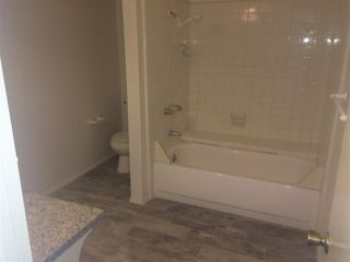 Photo 9: PACIFIC BEACH Apartment for rent : 2 bedrooms : 962 LORING Street #2B