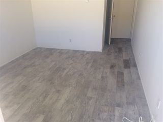 Photo 11: PACIFIC BEACH Apartment for rent : 2 bedrooms : 962 LORING Street #2B