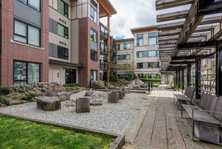 "Photo 17: 102 3133 RIVERWALK Avenue in Vancouver: Champlain Heights Condo for sale in ""NEW WATER"" (Vancouver East)  : MLS®# R2156823"