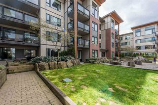 "Photo 16: 102 3133 RIVERWALK Avenue in Vancouver: Champlain Heights Condo for sale in ""NEW WATER"" (Vancouver East)  : MLS®# R2156823"
