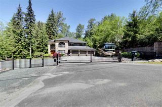 Photo 19: 26115 124 AVENUE in Maple Ridge: Websters Corners House for sale : MLS®# R2171616