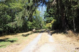 Photo 3: 7345 McMillan Rd in SOOKE: Sk Whiffin Spit House for sale (Sooke)  : MLS®# 769222
