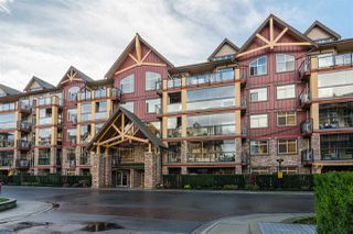 """Photo 1: 241 8288 207A Street in Langley: Willoughby Heights Condo for sale in """"Yorkson Creek Walnut Ridge II"""" : MLS®# R2222311"""