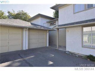 Photo 14: 12 2669 Shelbourne St in VICTORIA: Vi Jubilee Row/Townhouse for sale (Victoria)  : MLS®# 775944