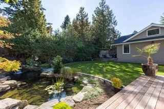 Photo 9: 5250 9A Avenue in Delta: Tsawwassen Central House for sale (Tsawwassen)  : MLS®# R2239384