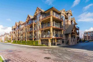 """Main Photo: 417 8328 207A Street in Langley: Willoughby Heights Condo for sale in """"Yorkson Creek"""" : MLS®# R2258705"""