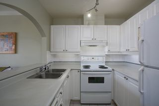 "Photo 7: 304 2588 ALDER Street in Vancouver: Fairview VW Condo for sale in ""BOLLERT PLACE"" (Vancouver West)  : MLS®# R2304230"