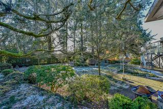 "Photo 16: 11958 WOODHURST Drive in Delta: Sunshine Hills Woods House for sale in ""SUNSHINE HILLS"" (N. Delta)  : MLS®# R2340339"
