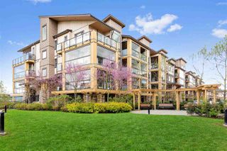 "Main Photo: 319 12635 190A Street in Pitt Meadows: Mid Meadows Condo for sale in ""CEDAR DOWNS"" : MLS®# R2362531"