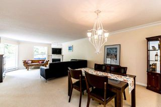 """Photo 3: 307 1500 OSTLER Court in North Vancouver: Indian River Condo for sale in """"Mountain Terrace"""" : MLS®# R2368182"""