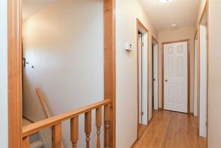 Photo 9: 359 S Jelly Street: Shelburne House (Bungalow) for sale : MLS®# X4446220