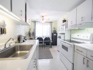 Photo 7: 146 WOODSTOCK NW in Edmonton: Zone 20 Townhouse for sale : MLS®# E4156708