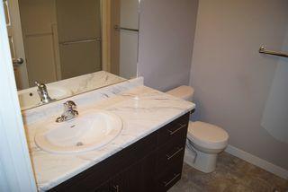 Photo 16: 2817 17A Avenue in Edmonton: Zone 30 House for sale : MLS®# E4162299