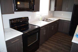 Photo 4: 2817 17A Avenue in Edmonton: Zone 30 House for sale : MLS®# E4162299