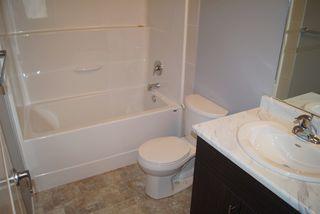 Photo 18: 2817 17A Avenue in Edmonton: Zone 30 House for sale : MLS®# E4162299