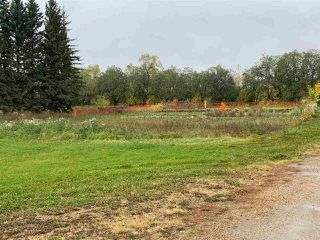 Photo 6: 24509 TWP RD 542: Rural Sturgeon County House for sale : MLS®# E4175743