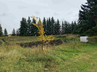 Photo 5: 24509 TWP RD 542: Rural Sturgeon County House for sale : MLS®# E4175743