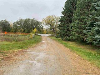 Photo 7: 24509 TWP RD 542: Rural Sturgeon County House for sale : MLS®# E4175743