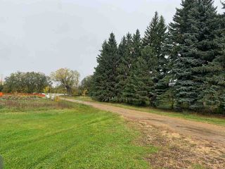 Photo 8: 24509 TWP RD 542: Rural Sturgeon County House for sale : MLS®# E4175743