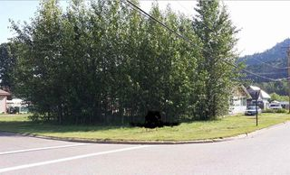Photo 20: 1032 KING Street in Smithers: Smithers - Town House for sale (Smithers And Area (Zone 54))  : MLS®# R2429352