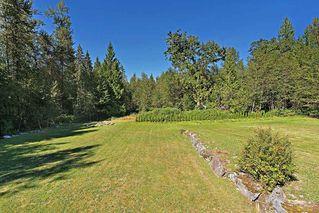 Photo 29: 12232 261 Street in Maple Ridge: Websters Corners House for sale : MLS®# R2493946