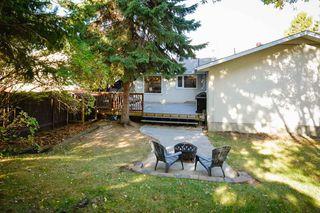 Photo 33: 4 BEAVERBROOK Crescent: St. Albert House for sale : MLS®# E4221482