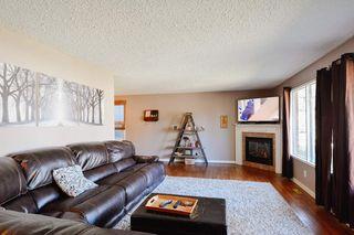Photo 7: 4 BEAVERBROOK Crescent: St. Albert House for sale : MLS®# E4221482