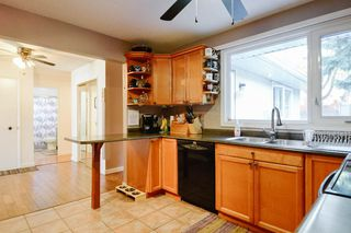 Photo 17: 4 BEAVERBROOK Crescent: St. Albert House for sale : MLS®# E4221482