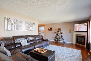 Photo 8: 4 BEAVERBROOK Crescent: St. Albert House for sale : MLS®# E4221482