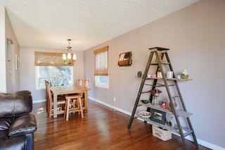 Photo 9: 4 BEAVERBROOK Crescent: St. Albert House for sale : MLS®# E4221482