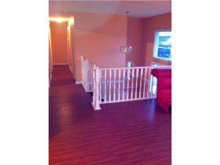 Photo 6: 21227 COOK AV in Maple Ridge: Southwest Maple Ridge House for sale : MLS®# V988051