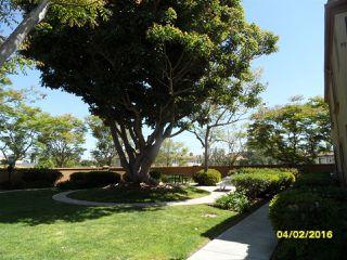 Photo 19: LINDA VISTA Condo for sale : 3 bedrooms : 2012 Coolidge St #93 in San Diego