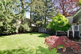 Photo 20: 1501 CHARLAND Avenue in Coquitlam: Central Coquitlam House for sale : MLS®# R2059390