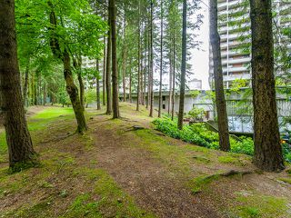 "Photo 17: 1002 3771 BARTLETT Court in Burnaby: Sullivan Heights Condo for sale in ""TIMBERLEA"" (Burnaby North)  : MLS®# R2065631"