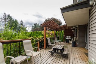 Photo 6: 23042 CLIFF Avenue in Maple Ridge: East Central House for sale : MLS®# R2102960
