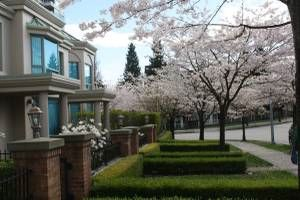 """Photo 17: 1 6611 SOUTHOAKS Crescent in Burnaby: Highgate Townhouse for sale in """"GEMINI I"""" (Burnaby South)  : MLS®# R2111213"""