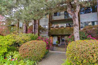"""Photo 1: 205 1721 ST. GEORGES Avenue in North Vancouver: Central Lonsdale Condo for sale in """"CEDAR HILLS"""" : MLS®# R2169585"""