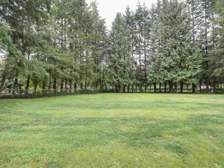Photo 19: 23588 52ND Avenue in Langley: Salmon River House for sale : MLS®# R2173447