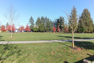 "Photo 20: 133 15988 83 Avenue in Surrey: Fleetwood Tynehead Townhouse for sale in ""Glenridge"" : MLS®# R2220361"