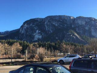 "Photo 15: 204 37841 CLEVELAND Avenue in Squamish: Downtown SQ Condo for sale in ""Studio Sq"" : MLS®# R2227207"