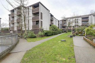 Photo 13: 414 340 GINGER Drive in New Westminster: Fraserview NW Condo for sale : MLS®# R2237582