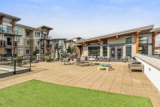 Photo 3: 312 6628 120 Street in Surrey: West Newton Condo for sale : MLS®# R2256343