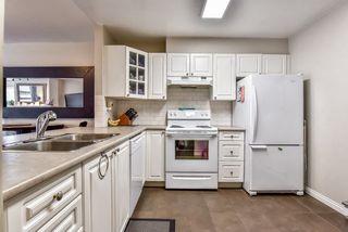 """Photo 4: 108 15130 108 Avenue in Surrey: Bolivar Heights Condo for sale in """"RIVERPOINTE"""" (North Surrey)  : MLS®# R2262170"""
