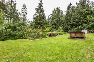 Photo 6: 34245 HARTMAN Avenue in Mission: Mission BC House for sale : MLS®# R2268149